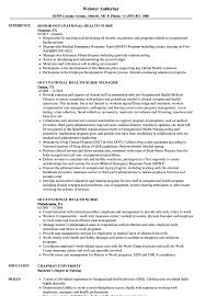 Download Occupational Health Nurse Resume Sample As Image File