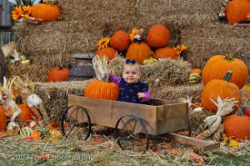 Jacksonville Nc Pumpkin Patch by Pumpkin Patch Photography Google Search Holiday Photography