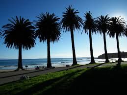 Scenic Refugio Beach Just North Of Santa Barbara Features Grass And Palm Trees A Great Place To Stop While Cruising The Coast