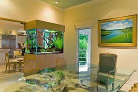 aquarium deko selber machen inspirierende ideen und tipps