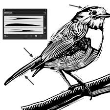 Adobe Illustrator Tutorial Create A St Of Art Brushes To Use In Linocut Style Artwork
