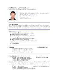 Job Skills For Resumes Awesome Resume Portfolio Examples Fresh Bsw