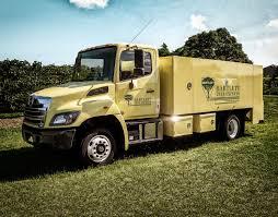 100 Best Semi Truck Brand HINO TRUCKS HINO 268 Medium Duty