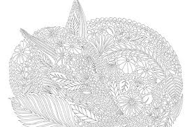 A Magical Colouring In Book That Has Become Somewhat Of An International Sensation Animal Kingdom By Talented Illustrator Millie Marotta Is Packed Full