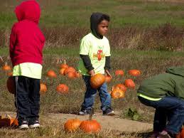 Pumpkin Patch Collins Ms by Future Scholars Early Learning Center Future Scholars Early
