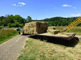 Ramblings From Fink Family Farm: The Hay Is In The Barn! 3 Barns Lessons Tes Teach Hay Barn Interior Stock Photo Getty Images Long Valley Heritage Restorations When Where The Great Wedding Free Hay Building Barn Shed Hut Scale Agriculture Hauling Lazy B Farm With Photos Alamy For A Night Jem And Spider Camp Out In That Belonged To Richardsons Benjamin Nutter Architects Llc Filesalt Run Road With Hoodjpg Wikimedia Commons Press Caseys Outdoor Solutions Florist Cookelynn Project Dry Levee Salvage