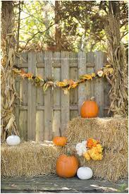 Goebberts Pumpkin Farm Haunted House by 12 Best Pumkin Patch Ideas Images On Pinterest Pumpkin Farm