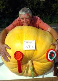 Worlds Heaviest Pumpkin In Kg by 12 Incredibly U0027delicious Photos U0027 Of Gigantic Vegetables U2014size