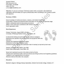 Sample Of Resume May Resume