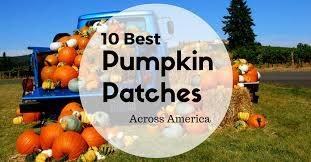 Portland Maine Pumpkin Patch by 10 Best Pumpkin Patches Across America Group Tours