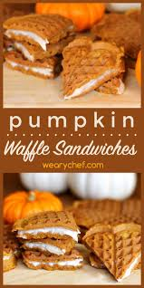 Pumpkin Spice Snickerdoodles Pinterest by 1229 Best Pumpkin Recipes Images On Pinterest Pumpkin