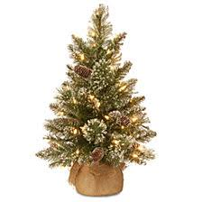 National Tree Company 2 Glittery Bristle Pine Burlap With 7 White Tipped Cones