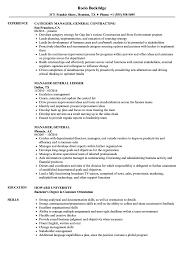 Download Manager General Resume Sample As Image File