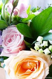 Wholesale Floral Coupon Code - Site Best Buy 12 Best Florists In Singapore With The Prettiest Fresh Enjoy Flowers Review Coupon Code September 2018 Whosale Flowers And Supplies San Diego Coupon Code Fryouflowerscom Valentines Day 15 Off Fall Winter Flower Walls The Wall Company 1800flowerscom Black Friday Sale Free Shipping 16 Farmgirl Flowers Discount Code Off Cactus Promo Ladybug Florist Cc Pizza Coupons Discount Teleflorist Wet Seal Discount 22 1800 Coupons Codes Deals 2019 Groupon Unique Free Delivery Beautiful Fruit Of Bloom