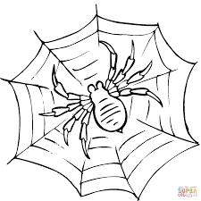 Dibujo de Tela de Araña para colorear Dibujos para colorear