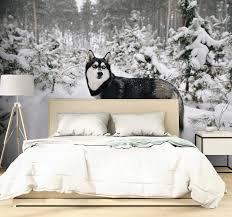 winterwald und husky natur tapete