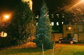 Mystery Christmas Tree Slaithwaite Gets Its Own Festive