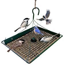 Zenport Zenport Z 3 1 Platform Bird Seed Feeder & Reviews