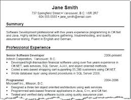 Resume Job Experience Examples Professional Summary For High School No