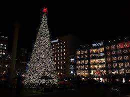 Alameda Christmas Tree Lane 2015 by Christmas Splendi Palo Alto Christmas Lights Tree Lane Thompson