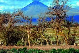 100 Tierra Atacama Hotel And Spa Info Trip Harvest