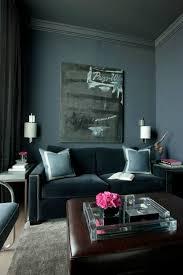 Brown Carpet Living Room Ideas by Living Room Light Blue Living Room Living Room Rug Ideas Gray