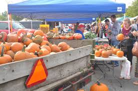 Largest Pumpkin Ever by Bike To Market Day Neutral Cycle