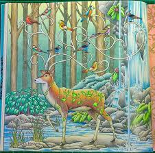 Johanna Basford Enchanted Forest Colouring Book Features A Number Of Pages Where Single Featured Animal Or Item Is Drawn Floating In Space