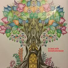 78 Best Johanna Basford Enchanted Forest Secret Garden Lost Ocean