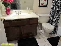 Bathroom: Ideas For Small Bathrooms Lovely Small Bathroom Makeover ... My Budget Friendly Bathroom Makeover Reveal Twelve On Main Ideas A Beautiful Small Remodel The Decoras Jchadesigns Bathroom Mobile Home Ideas Cheap For 20 Makeovers On A Tight Budget Wwwjuliavansincom 47 Guest 88trenddecor Best 25 Pinterest Cabinets 50 Luxury Crunchhecom