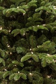 Fraser Christmas Tree Farm by 7 5 Ft Noble Fir Christmas Tree With Smart String Lighting