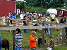 Maryland Pumpkin Patches Near Baltimore by Family Fun And Pumpkin Patch At Weber U0027s Cider Mill Farm In