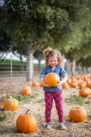 Livermore Pumpkin Patch by Pumpkins And Maze At G U0026m Farms Livermore Ca Inside Expat