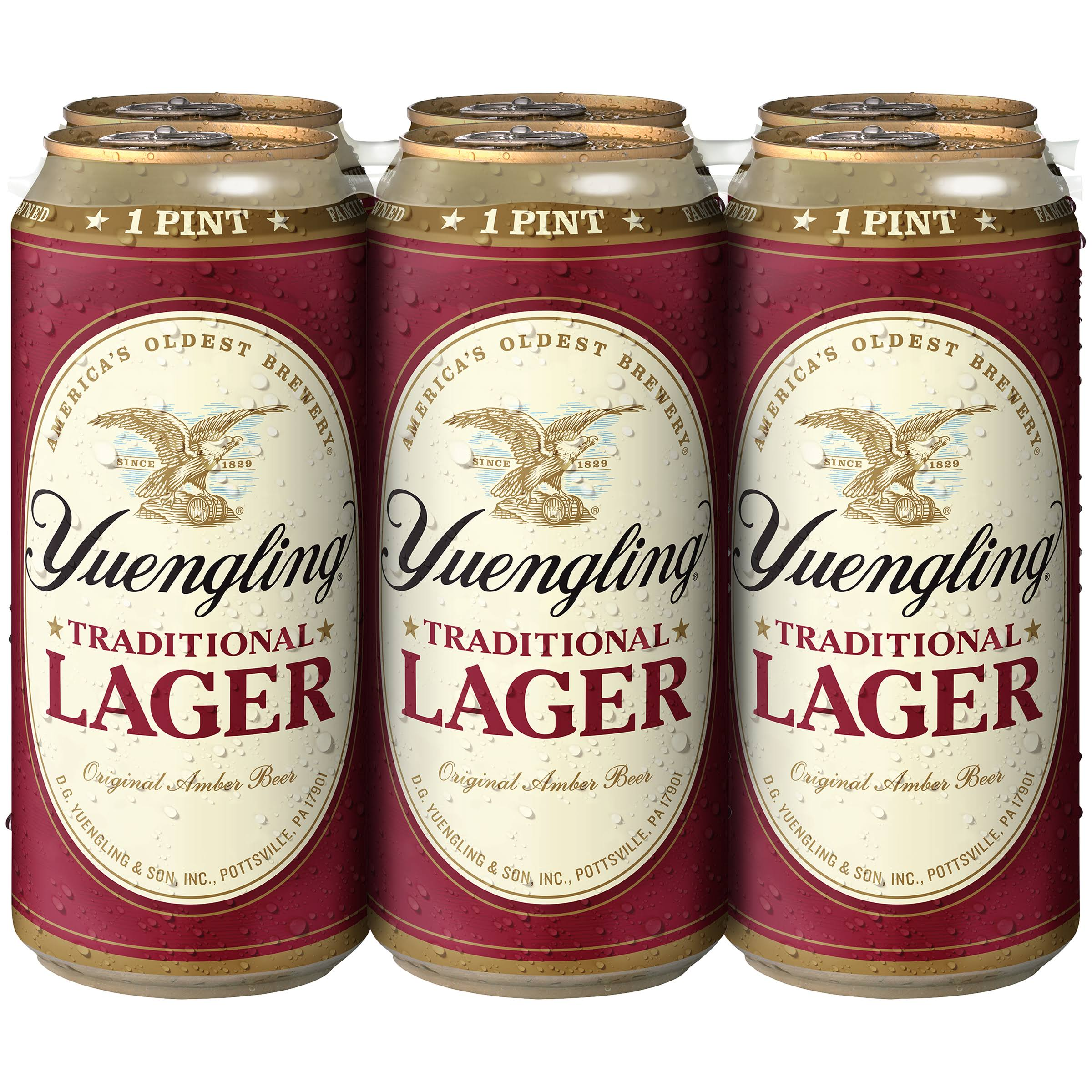 Yuengling Traditional Beer - 16oz, 6 Pack