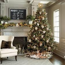 Noble Fir Christmas Tree Christmas Winter Neutrals