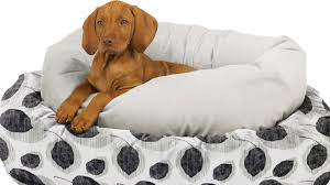 Bowser Dog Beds by 10 Must Have Pet Products For Your Dog Marc And Mandy Show