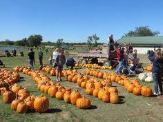 Pumpkin Patches In Okc by 2016 Pumpkin Patches Metrofamily Magazine September 2015