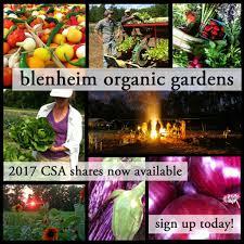 Pumpkin Farms In Waldorf Maryland by Blenheim Organic Gardens Localharvest