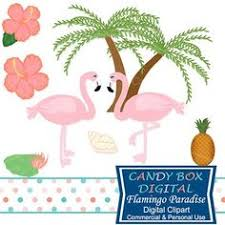 These Friendly Flamingos Are Enjoying Their Tropical Vacation The Beautiful
