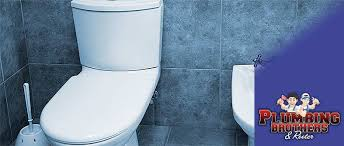 Clogged Toilet Drain Home Remedy by Sherman Oaks Clogged Toilet Repair Service In Sherman Oaks Ca