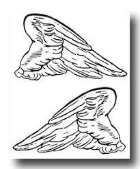 Angel Wings Percy Jackson BooksKid