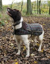 Filson Dog Bed by Barbour Dog Jackets Protect Your Dog From The Elements Dog