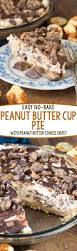 Keebler Double Layer Pumpkin Cheesecake Recipe by Best 25 No Bake Pumpkin Pie Ideas On Pinterest No Bake Pumpkin