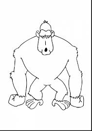 Superb Zoo Animals Gorilla Coloring Page With Pages And