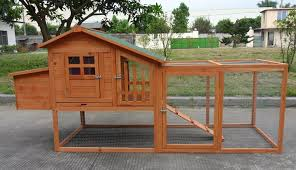 Amazon.com : ChickenCoopOutlet Deluxe Large Wood Chicken Coop ... Best 25 Chicken Runs Ideas On Pinterest Pen Wonderful Diy Recycled Coops Instock Sale Ready To Ship Buy Amish Boomer George Deluxe 4 Coop With Run Hayneedle Maintenance Howtos Saloon Backyard Images Collections Hd For Gadget The Chick Chickens Predators Myth Of Supervised Runz Context Chicken Coop Canada Dirt Floor In Run Backyard Ultimate By Infinite Cedar Backyard Coup 28 Images File