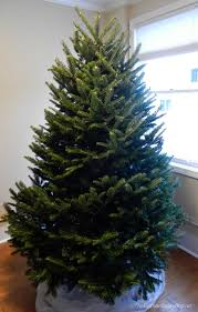 Ways To Decorate A Nautical Christmas Tree That Begin With Beautiful Fresh Balsam Fir