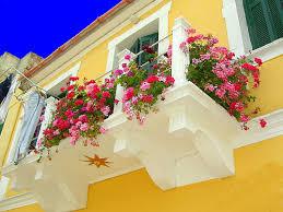 DIY Small Balcony Flower Garden Design Ideas