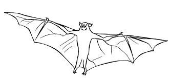 Bat Coloring Pages 12