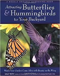 Attracting Insects To Your Garden by Attracting Butterflies U0026 Hummingbirds To Your Backyard Watch Your
