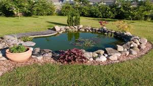 Amazing Gardens With Small Backyard Pond Design Ideas - YouTube Very Small Backyard Pond Surrounded By Stone With Waterfall Plus Fish In A Big Style House Exterior And Interior Care Backyard Ponds Before And After Small Build Great Designs Gardens Design Garden Ponds Home Ideas Fniture Terrific How To Your Images Natural Look Koi Designs Creek And 9 To A For Goldfish